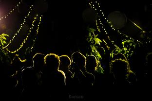party jungle - soirée mariage - effets lumières silhouettes